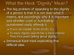 what the heck dignity mean