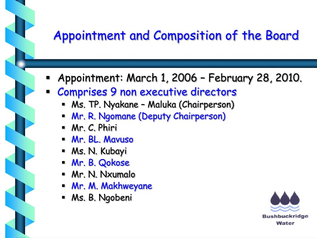 Appointment and Composition of the Board