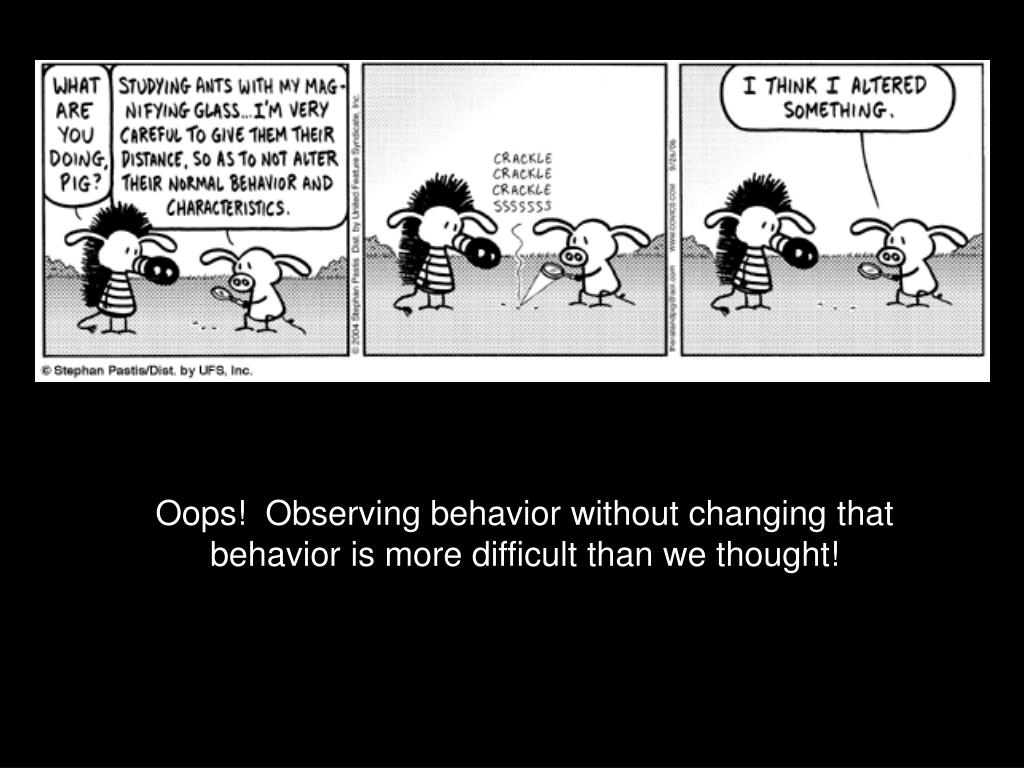 Oops!  Observing behavior without changing that behavior is more difficult than we thought!