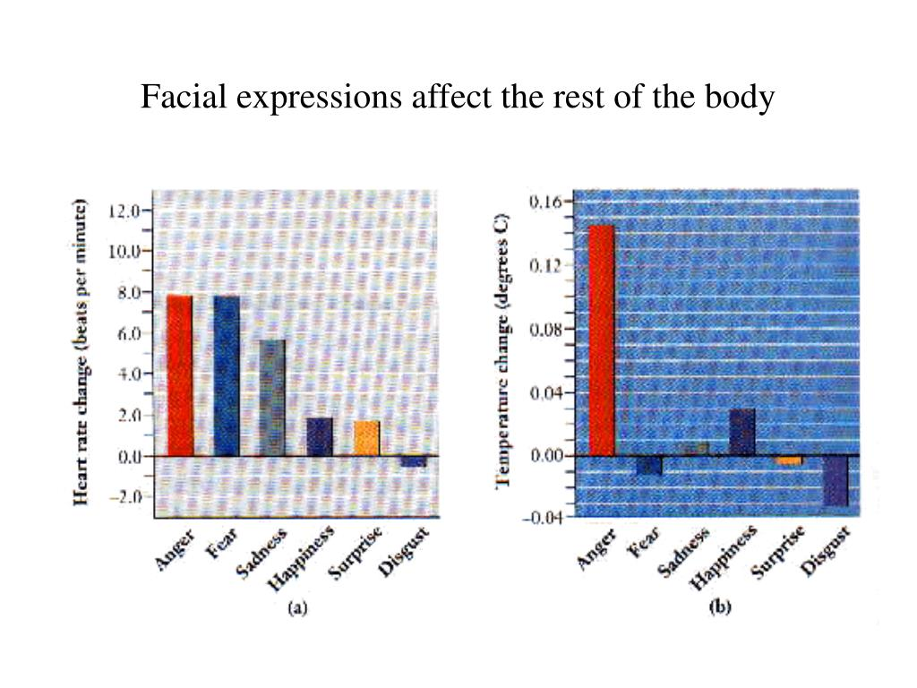 Facial expressions affect the rest of the body