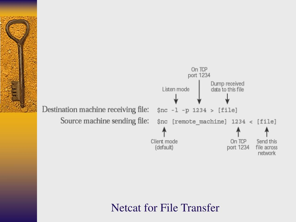 Netcat for File Transfer
