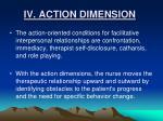 iv action dimension