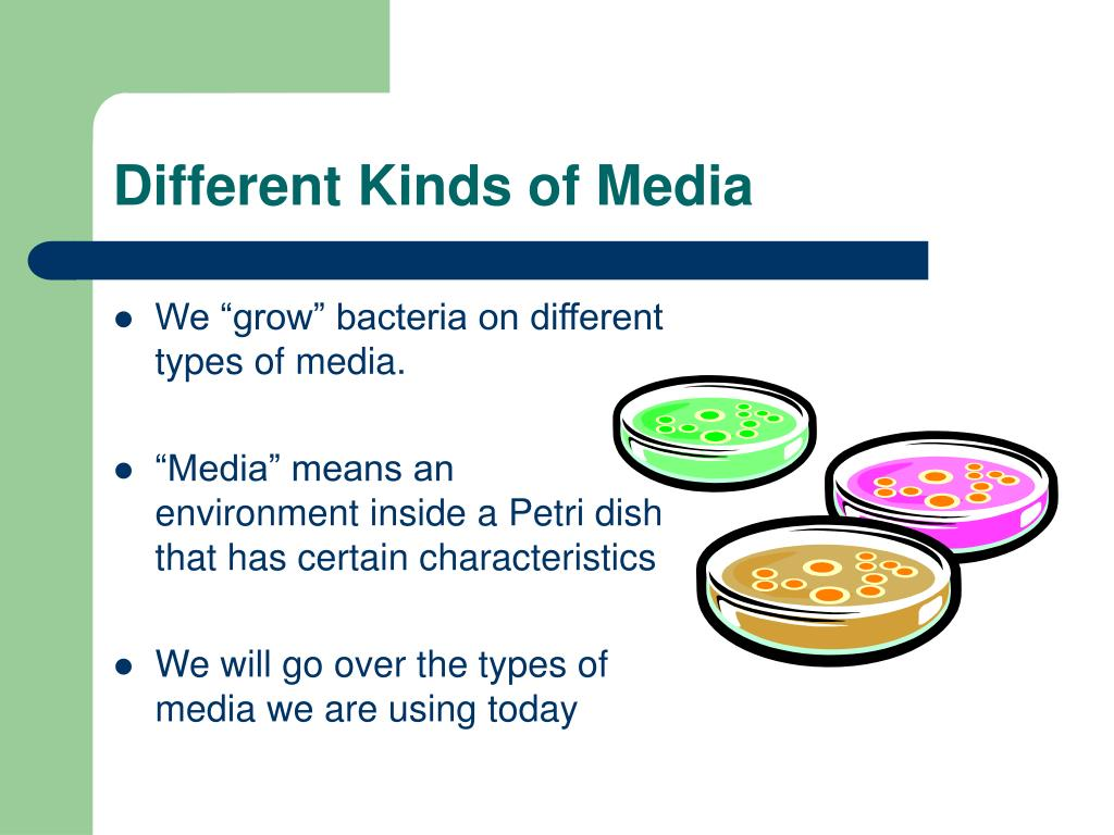 Different Kinds of Media
