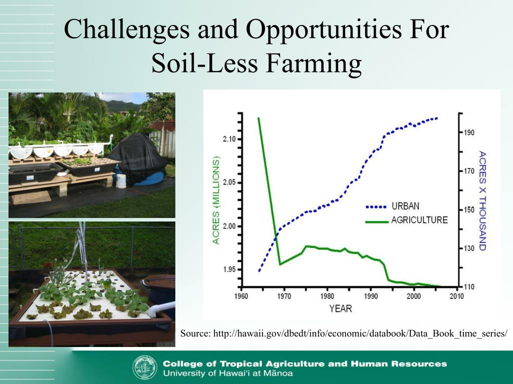 Challenges and Opportunities For Soil-Less Farming