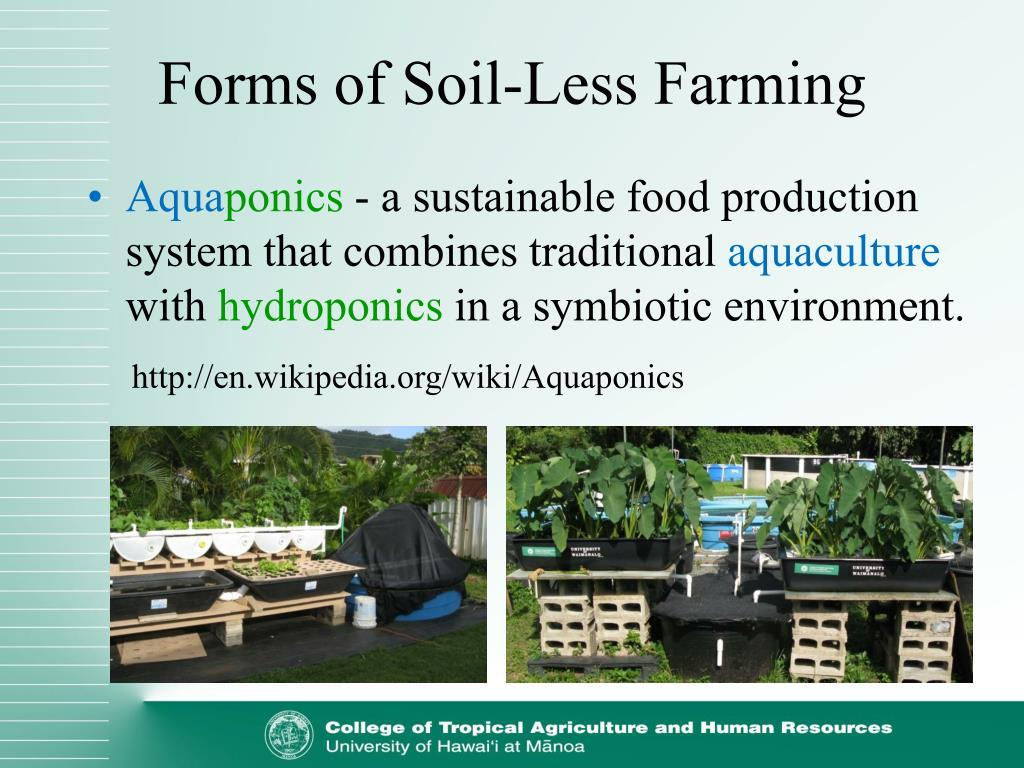 Forms of Soil-Less Farming