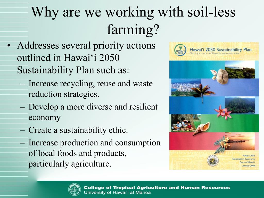 Why are we working with soil-less farming?