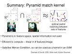 summary pyramid match kernel