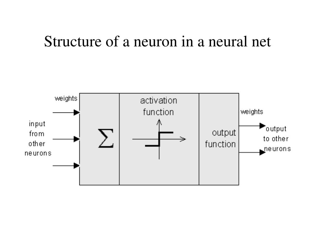 Structure of a neuron in a neural net