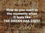 how do you react in the moments when it feels like the dream has died
