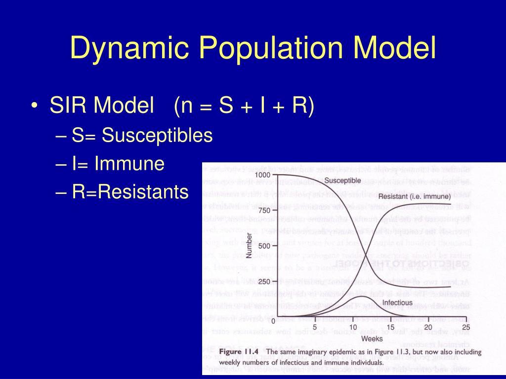 Dynamic Population Model