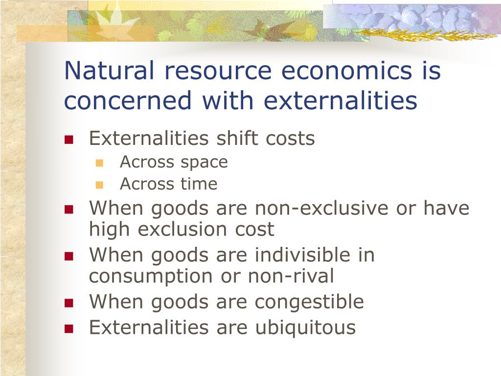 Natural resource economics is concerned with externalities