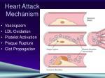 heart attack mechanism