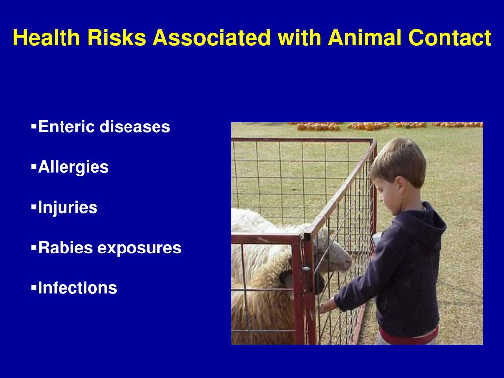 Health Risks Associated with Animal Contact