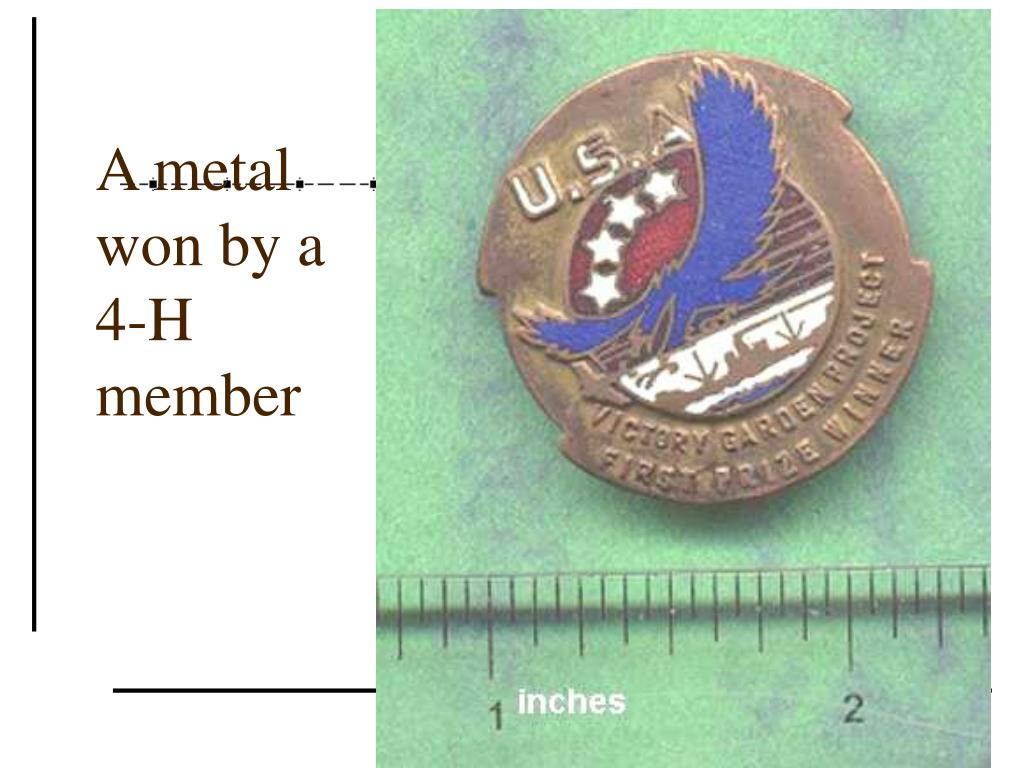 A metal won by a 4-H member