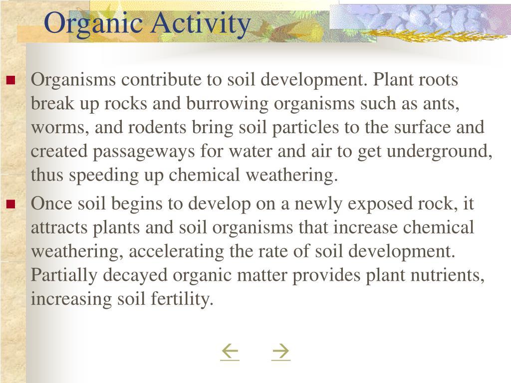 Organic Activity
