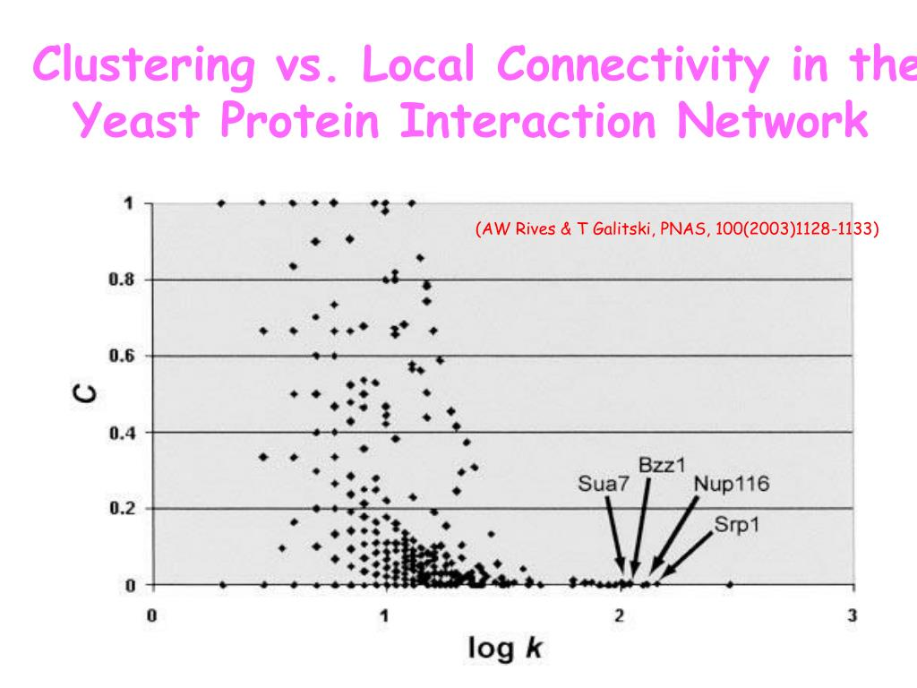 Clustering vs. Local Connectivity in the
