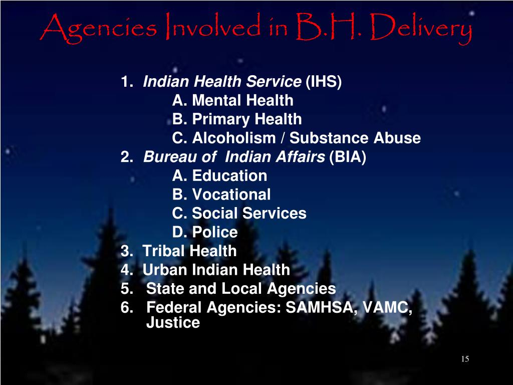 Agencies Involved in B.H. Delivery
