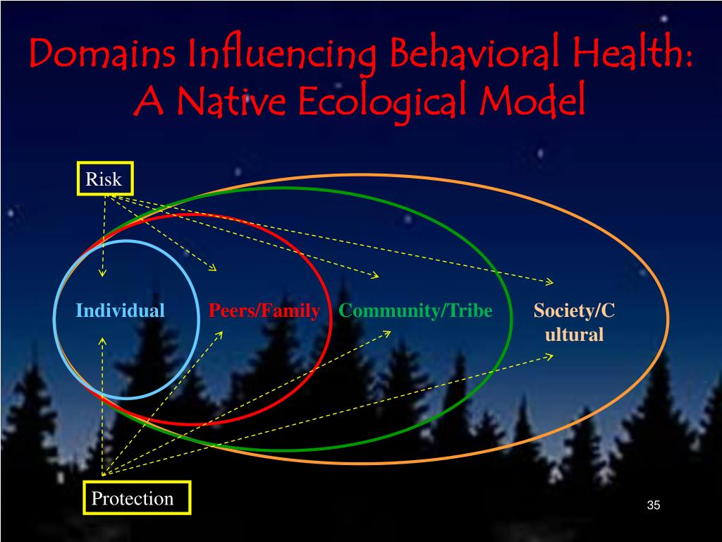 Domains Influencing Behavioral Health: A Native Ecological Model