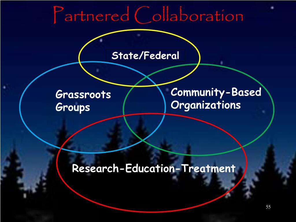 Partnered Collaboration