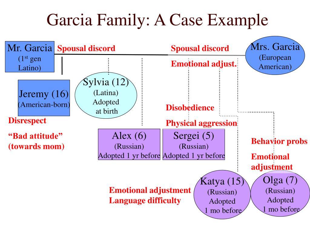 Garcia Family: A Case Example