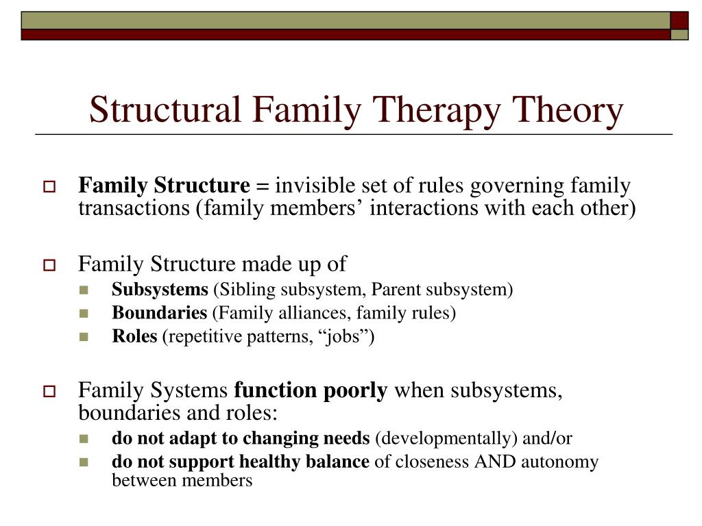 Structural Family Therapy Theory