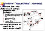 attention maturational accounts16