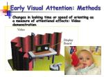 early visual attention methods