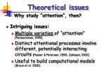 theoretical issues5