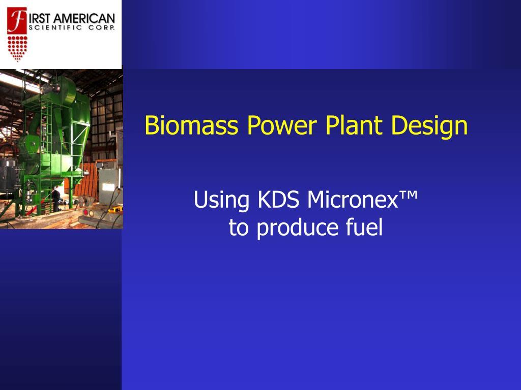 Biomass Power Plant Design