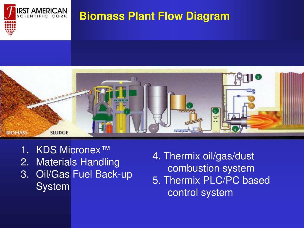 Biomass Plant Flow Diagram