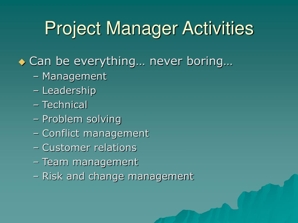 Project Manager Activities