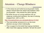 attention change blindness28