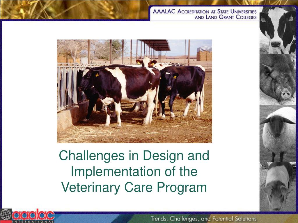 Challenges in Design and Implementation of the Veterinary Care Program