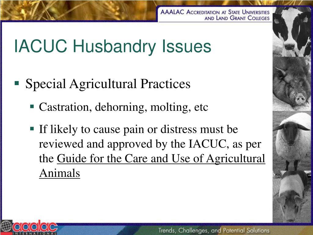 IACUC Husbandry Issues