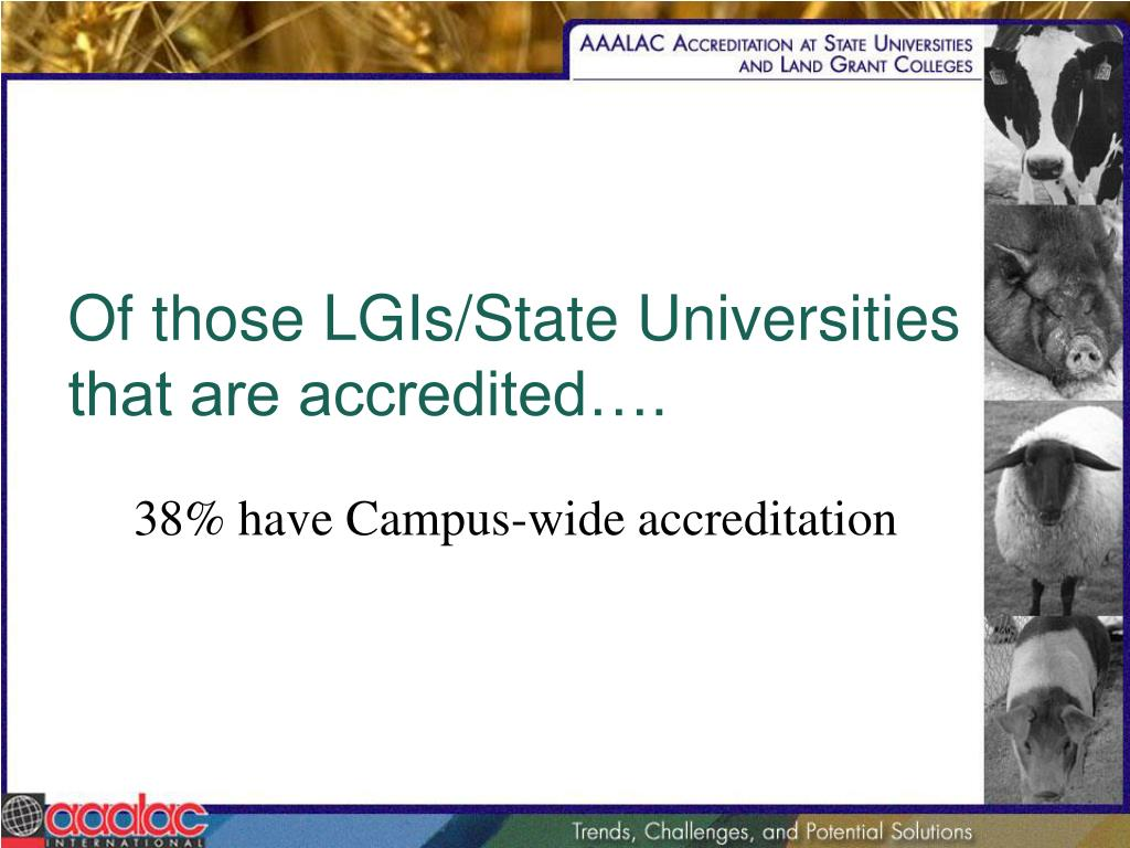 Of those LGIs/State Universities that are accredited….