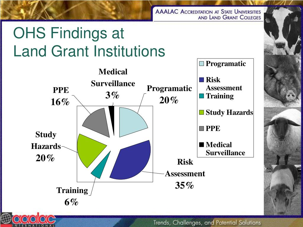 OHS Findings at