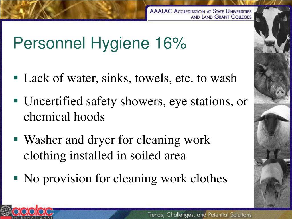 Personnel Hygiene 16%