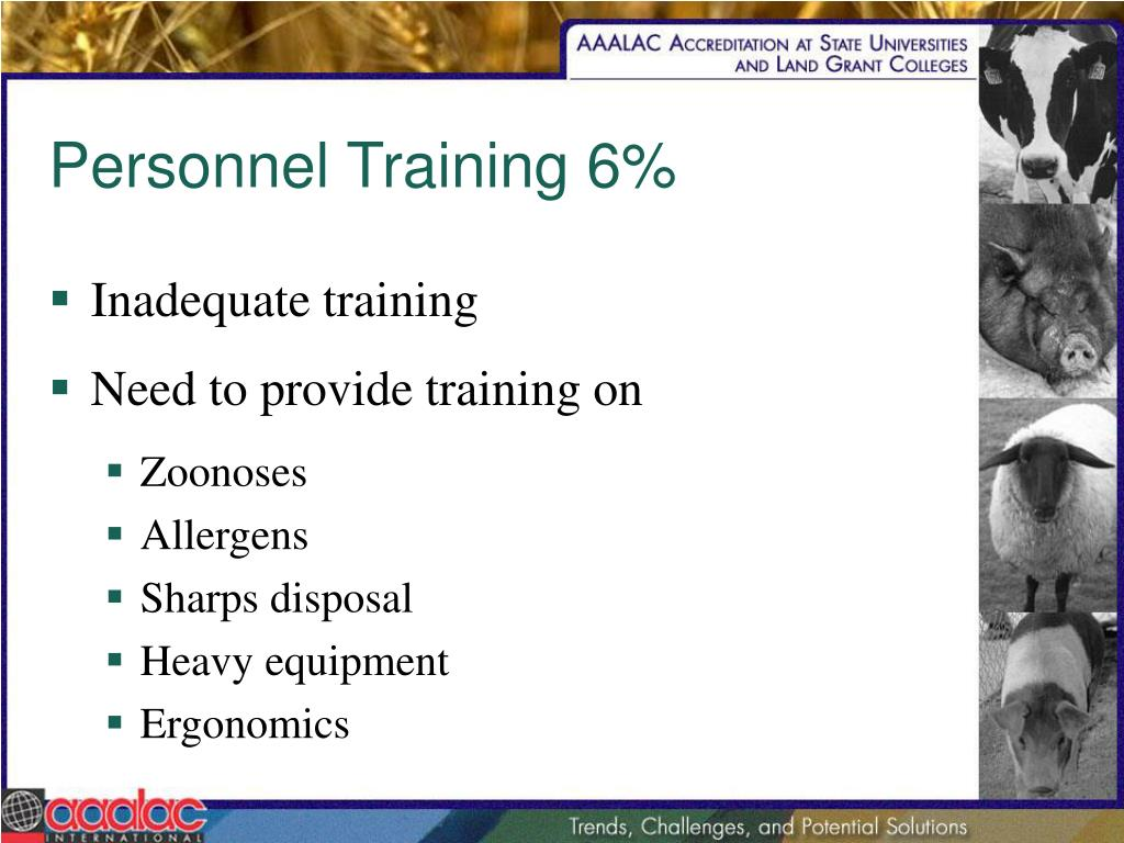 Personnel Training 6%