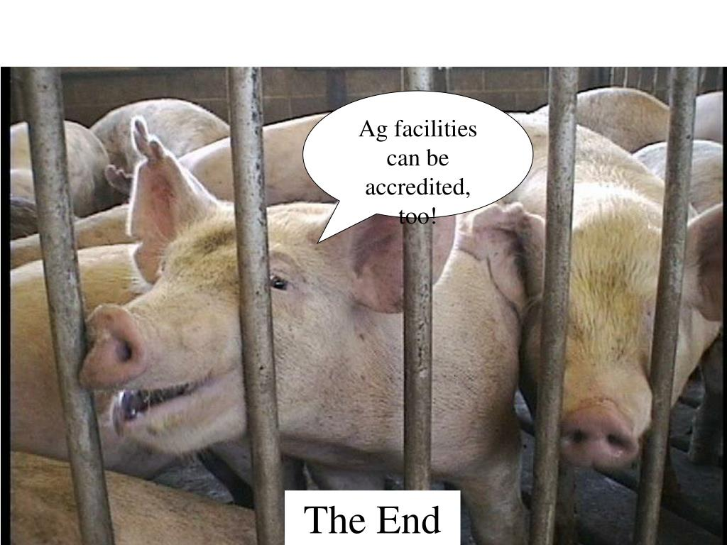 Ag facilities can be accredited, too!