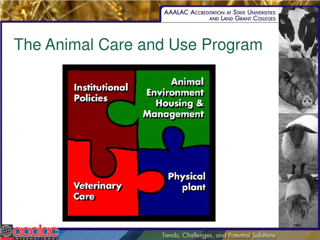 The Animal Care and Use Program