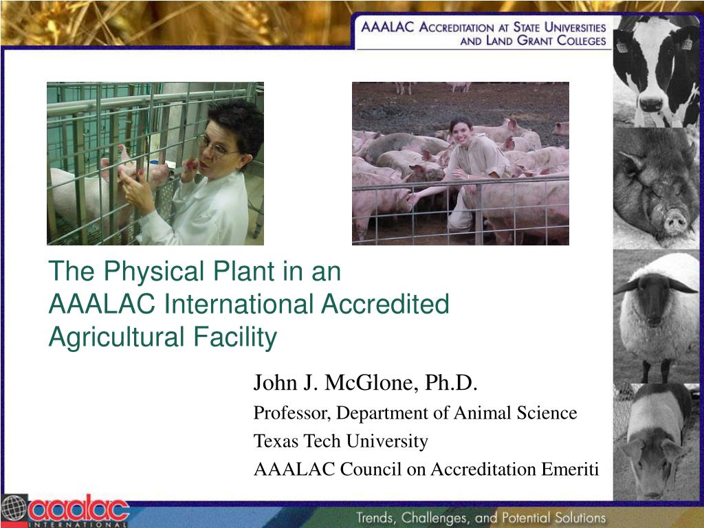 The Physical Plant in an