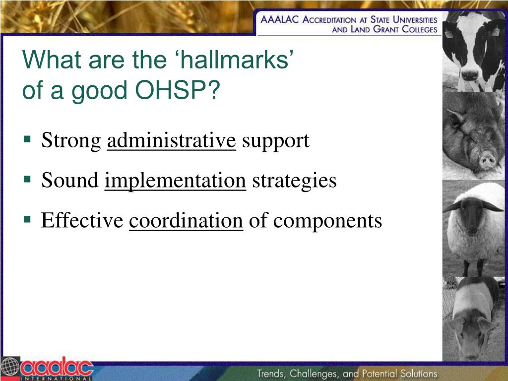 What are the 'hallmarks'