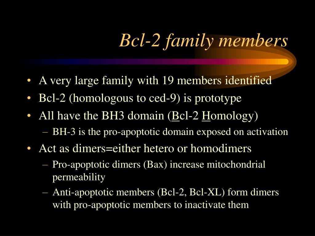 Bcl-2 family members