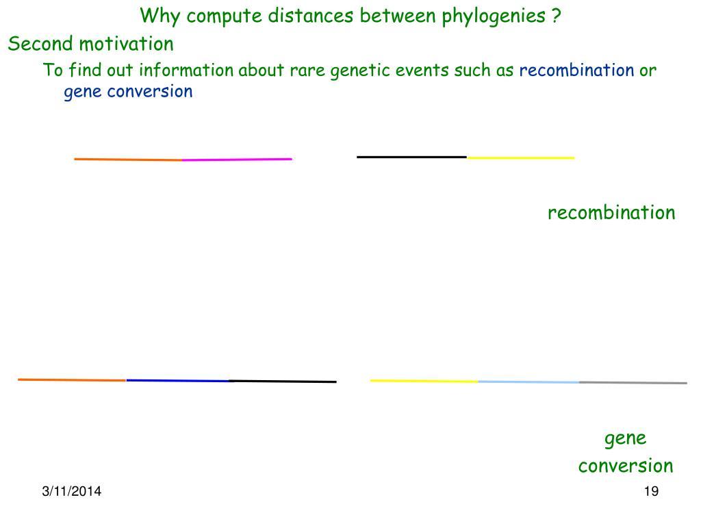 Why compute distances between phylogenies ?