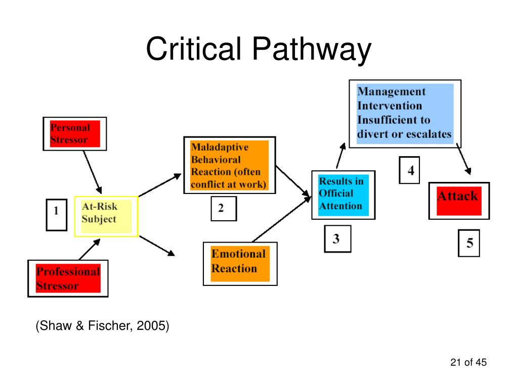 Critical Pathway