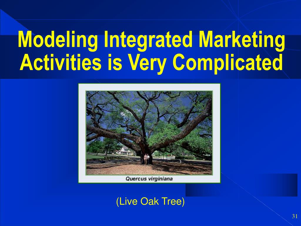 Modeling Integrated Marketing Activities is Very Complicated