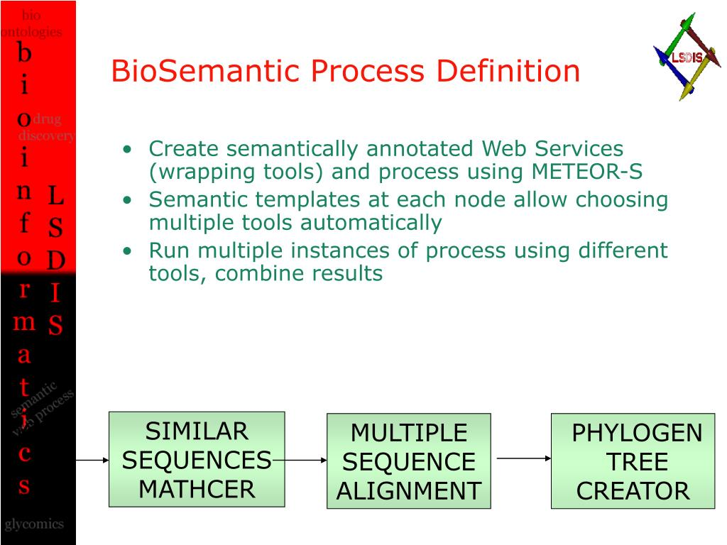 BioSemantic Process Definition