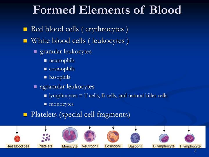 Formed Elements of Blood