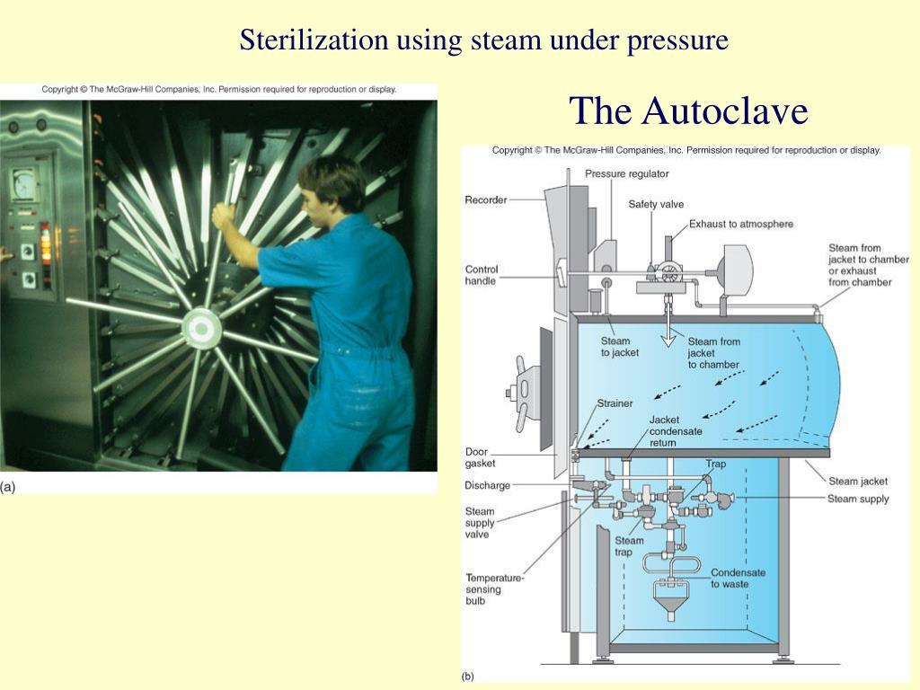 Sterilization using steam under pressure