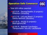 operation safe commerce13